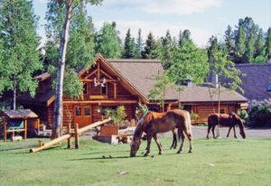Blockhütten-Erlebnis Kanada