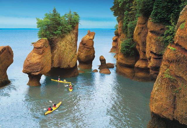 Bay Of Fundy Natur Nova Scotia