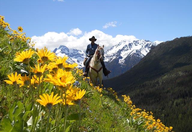 Chilcotin Holidays Canada Pferd Berge