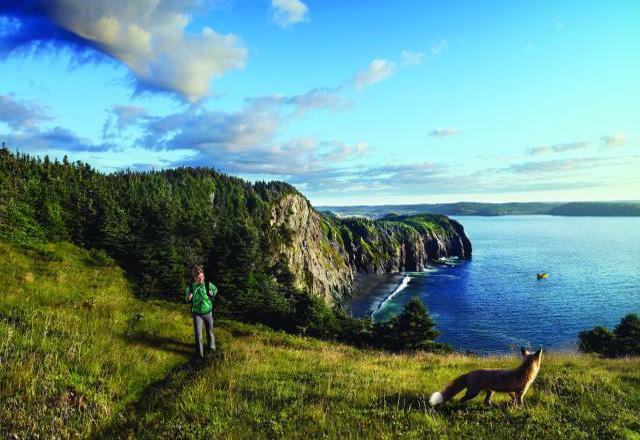 Neufundland Natur Kanada