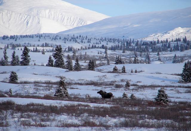 Ausblick der Sky High Wilderness Ranch