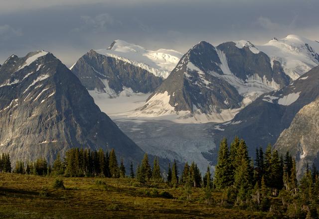 Glacier Nationalpark in Alberta in Kanada