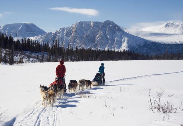 Ein einmaliges Erlebnis im Yukon