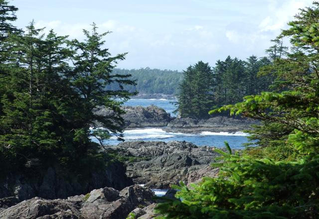 Wandern an der Küste in British Columbia
