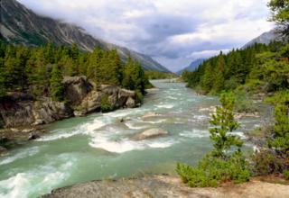 Natur in Alaska, dem größten Bundesstaat der USA