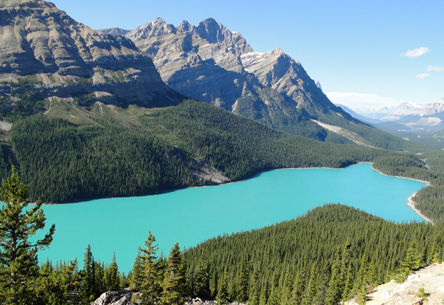Peyto Lake in Alberta Kanada