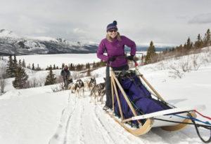 Yukon Husky Tour – Entdecker