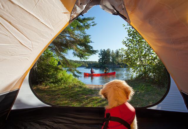 Entdecken Sie Kanada per Kanu