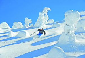 geführte Skisafari Big White, Revelstoke & Sun Peaks